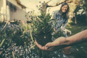 Comperare meno per un maggiore rispetto dell'ambiente e della nostra vita futura