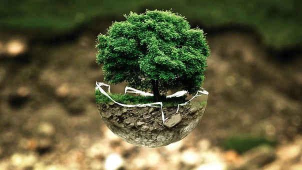 Cosa ognuno di noi può fare ogni giorno per salvaguardare l'ambiente