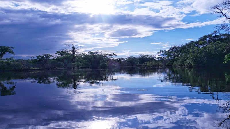 5 settembre, giornata dell'Amazzonia